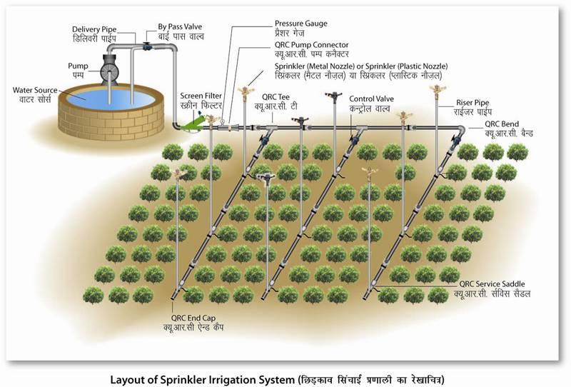 Sprinkler System Design Domis